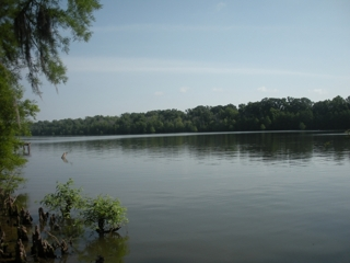 Waterfront Lot on Larto Lake For Sale