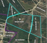 176 Acres Offered in 3 Parcels in Cross Hill, SC