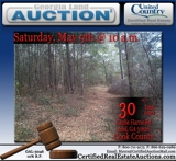 Georgia land auctions for Cook County Georgia land for sale