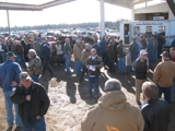 BI-STATE SPRING CONSIGNMENT AUCTION