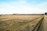 Top Producing Saunders County Farmland Auction