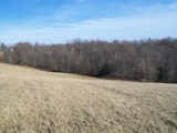 134 ACRES IN 6 TRACTS- BUILDING SITES-HUNTING GROUND