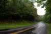 49-better_road_frontage-10081.JPG:
