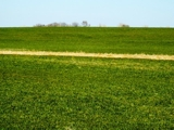 4/6 -EXCELLENT CROPLAND 154± ACRES GARFIELD COUNTY OK