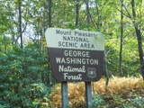 Absolute Auction 13 +/- Acres, Home, National Forest, Trout Stream in Amherst, Virginia