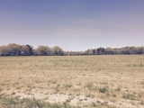 PROPERTY #1 - 93± TOTAL ACRES - SUMTER COUNTY, GEORGIA