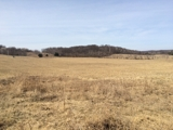 60+/- Acres of Tillable & Recreational Land