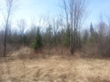 79.45± Acres Land in Douglas County, WI