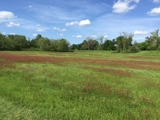 Waterfront Land For Sale in Grant Parish, Louisiana