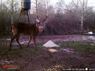 214 ac. Hunting property w/camp in North St. Landry Parish