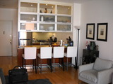 LUXURY 1 BR CONDO IN