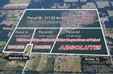 318 Acres - Alachua County, FL - ABSOLUTE!