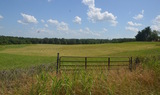 Auction 25 Acres+/- Divided or Whole--Prime I-85 Location