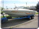TRUST AUCTION: Searay Boat/ IROC Convertible/ Ford Truck/ BMW/ Beetle/ Chevelle SuperSport