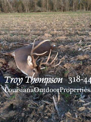 526 +/- acres for sale in Tensas Parish