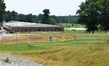 Equestrian Center Auction
