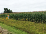 110± Acres of Prime Barron County Farmland