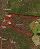 58+/- Heavily Wooded Acres in Orange County VA at Auction
