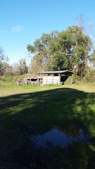 38+ Acre Property