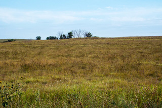 NW/4 less 3.52 acres (home) and NW/4 of SW/4 20-28N-24 W.I.M. Harper Co. OK.