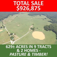 ABSOLUTE AUCTION - Real Estate