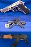 FALL FIREARM AUCTION!