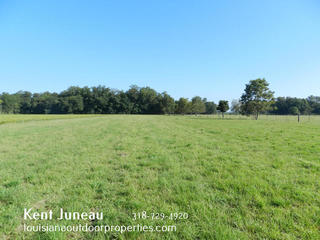10.32 acres for sale in DuPont, LA