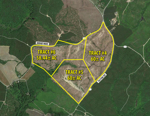 (Tract 4,5,6 of 7) 178.50± Acres King & Queen Co., VA