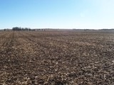 SAUNDERS COUNTY (TODD VALLEY IRRIGATED) FARMLAND AUCTION