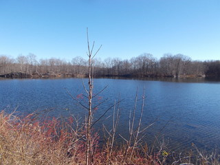 125+ ACRES - PRIVATE LAKE