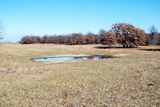 2/17 425± ACRES * KINGFISHER COUNTY * HENNESSEY OK AREA * MINERALS