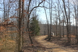 Wooded Hunting Recreational Income-Producing Property - 61.5 acres
