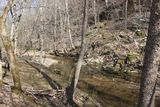 Scenic Creek - Walnuts & White Oaks - 7.3 acres - Mill Creek area