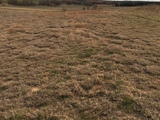 LAND AUCTION - WOODWARD COUNTY