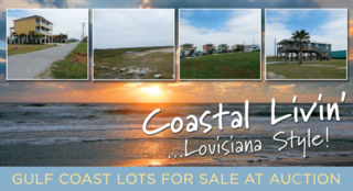 Coastal Lots on Holly Beach For Sale at Auction