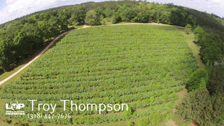 58 +/- acre Blueberry Farm For Sale In McComb Mississippi