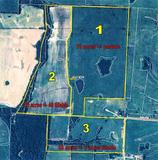 FARM REAL ESTATE - 155 acres will sell in 3 tracts