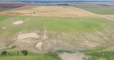 06/29 320± Acres Productive Small Grain Farms
