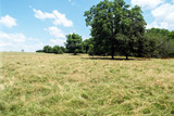 7/26 192.46± ACRES • MCCLAIN COUNTY OKLAHOMA • PONDS • HAY MEADOWS •