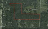 45 Acres in North Lowndes County