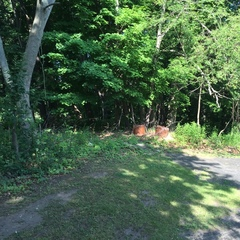 Real Estate AUCTION! 1.4 Acre Lot on Union Road!