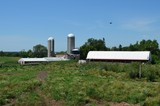 200 Acre Farm in St. Croix County WI