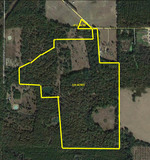 130 ACRES MITCHELL COUNTY, GA