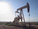MINERAL RIGHTS AUCTION