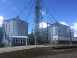Grain Storage Bins