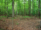 ABSOLUTE: 1.12 Acre Home Site in Boonsboro