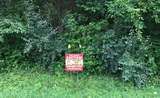 Goochland County Real Estate For Sale At Auction!