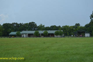 BLACK RIVER LAKE RANCH FOR SALE IN JONESVILLE, LA