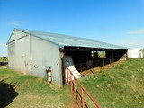 11/14  40± ACRES OF GRASS * POND * HOME/BARNS