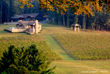 Mt Vale Vineyards